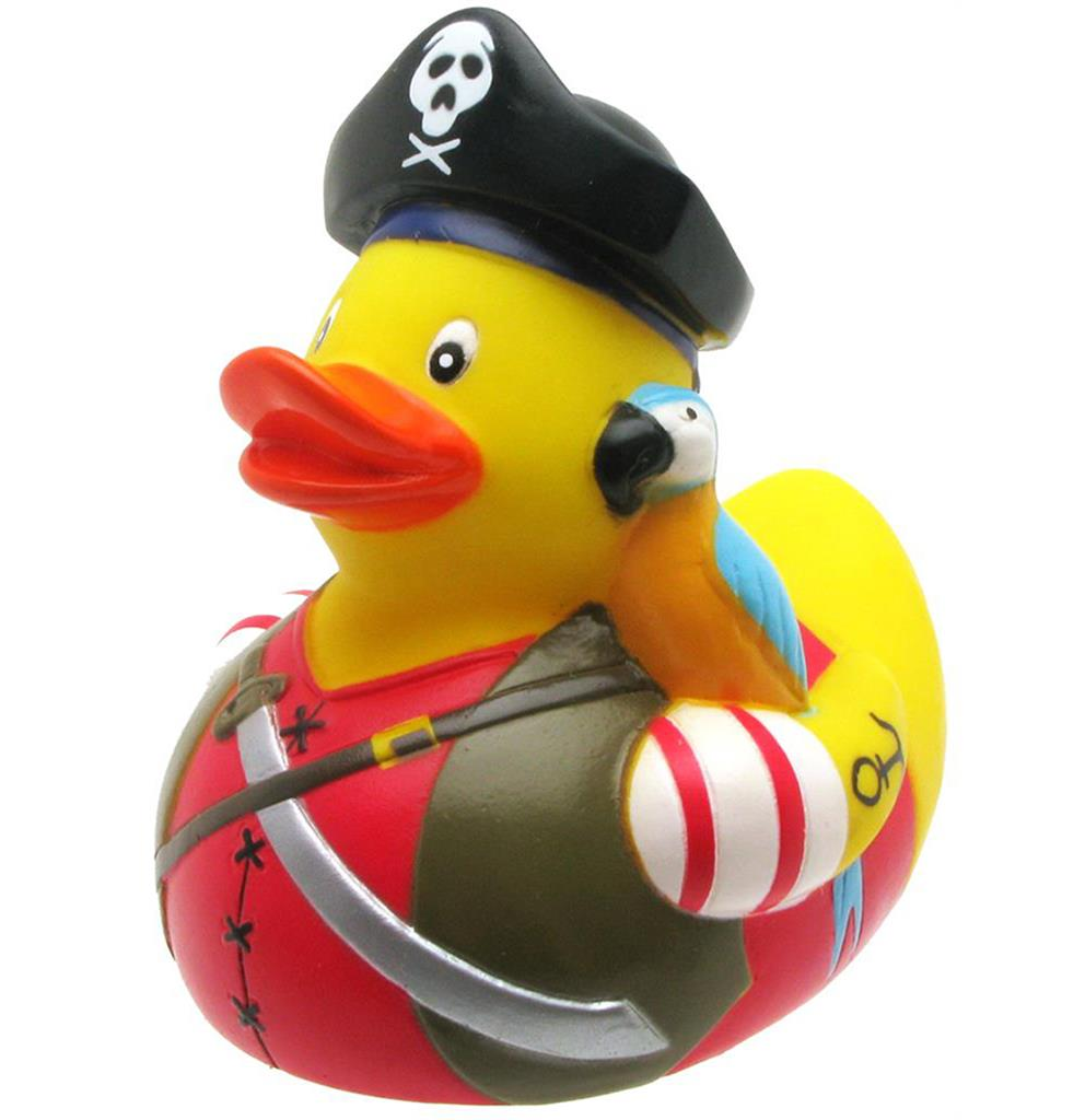 Duck Pirate with Parrot